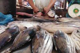 Harga ikan di Deliserdang relatif stabil