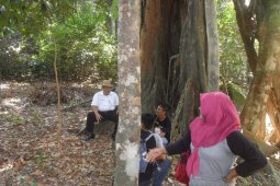 Geopark Bukit Penyabung Bangka Barat, dari kampung menuju wisata internasional