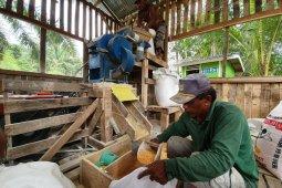 Martabe pupus keputusasaan petani jagung Aek Sumuran