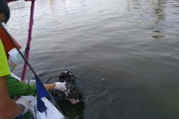 Ancol menjadi kawasan restorasi Kerang Hijau pertama di Indonesia