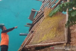 Angin puting beliung terjang dua kecamatan di Kabupaten Sukabumi