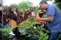 Murid SD praktek mengenal tanaman petani