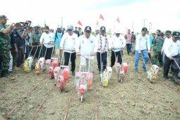 Gubernur: peremajaan sawit upaya sejahterakan petani