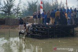 PT Timah budidayakan ikan endemik Bangka Belitung