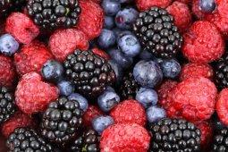 Kanker kolorektal bisa dicegah dengan konsumsi buah dan sayuran