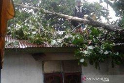 Rumah warga Abdya rusak diterjang puting beliung