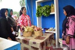 Gubernur Sumsel ajak lestarikan buah lokal durian, manggis dan nanas