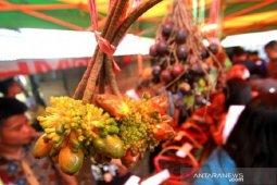 Desa Marajai bersiap gelar Festival Buah Lokal Kalimantan