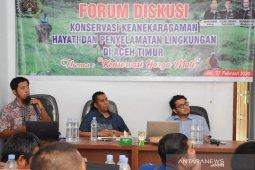 Hutan Aceh berkurang 15.140 hektare sepanjang 2019