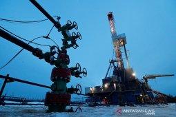 Harga minyak naik didukung penurunan persediaan AS dan data IEA