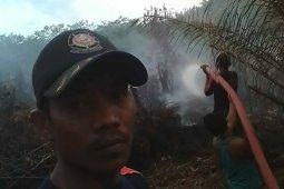 12 hektare lahan perkebunan sawit hangus terbakar di Aceh Singkil