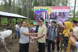 Kementerian LHK luncurkan program Silvopastura di KHDTK Aek Nauli