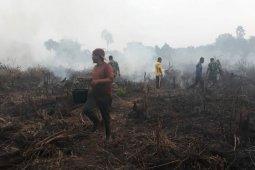 Petugas hadapi kendala padamkan kebakaran 9,5 hektar di Aceh Selatan