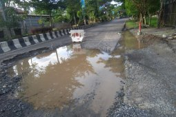 Jalan trans Kalimantan diharapkan segera perbaikan