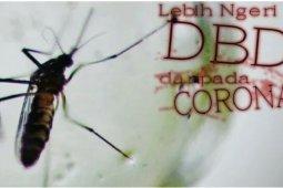 Sedikitnya 254 jiwa meninggal dunia karena DBD di tengah pandemi COVID-19