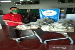 Ditengah COVID-19, Mahasiswa Polbangtan Medan berhasil ajari petani melek jual beli online