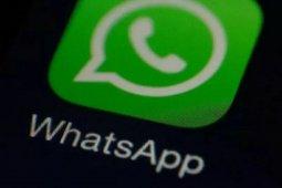 Bentuk WhatsApp lawan hoaks corona: Forward hanya ke satu chat