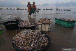 Ekspor perikanan Indonesia naik