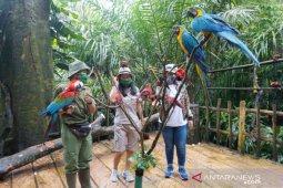 Satwa Safari Garden Bogor bisa disaksikan