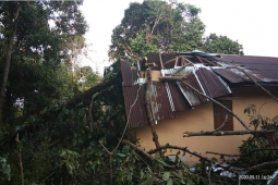Satu gereja di Kapuas Hulu rusak berat tertimpa pohon tengkawang