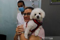 Riset : Muncul virus corona jenis baru yang berasal dari anjing