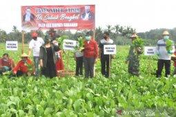 Pemkab Tabanan siap bantu petani dan peternak di tengah COVID-19