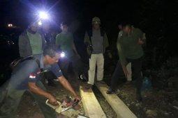 Tim BKPH Blangpidie musnahkan kayu olahan ilegal di hutan Abdya