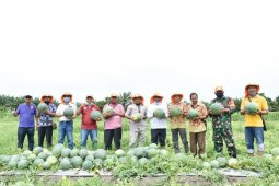 Masyarakat diminta manfaatkan lahan