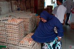 Harga telur ayam naik menjadi Rp39 ribu di Banda Aceh