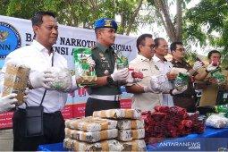BNN: Aceh peringkat enam provinsi rawan narkoba