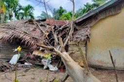 Diterjang angin Kencang, Pohon tumbang timpa dapur rumah Janda miskin di Aceh Jaya