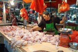 Harga ayam di Pontianak masih tinggi capai Rp34.000 per kilogram