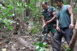 Warga Aceh Jaya temukan Bom Rudal, diduga peninggalan Jepang