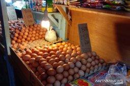 Harga telur ayam ras di pasar tradisional Ambon normal