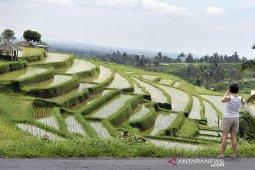 Pemkab Tabanan berkomitmen perkuat wisata alam berbasis lingkungan