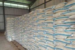 Produksi beras Lebak 160.442 ton, cukup untuk kebutuhan 6 bulan