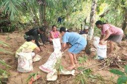 Sertu Samsul bantu warga panen kelapa sawit