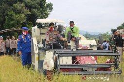 Kapolda Jambi dan Danrem 042/Gapu panen raya padi rawa di Kampung Tangguh Tanjabbar