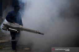 Dinkes  data 39 kasus DBD di Ambon