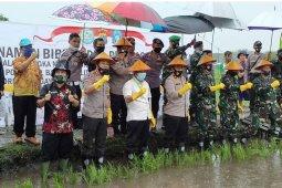 Pemkab Bangka Tengah tetapkan Namang sebagai desa ketahanan pangan