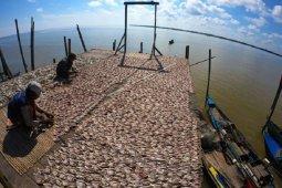 Permintaan ikan asin Jambi selama pandemi
