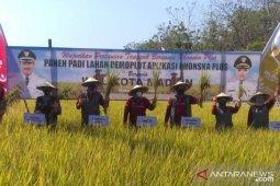 Pemkot Madiun dorong petani optimalkan produksi pertanian