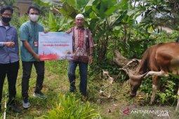 Telkomsel Serahkan Bantuan 777 Hewan Kurban
