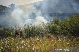 Kebakaran lahan akibat musim kemarau