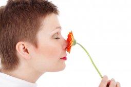 Manfaat dan risiko operasi hidung