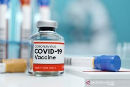 Menko Airlangga targetkan RI dapat 290 juta dosis vaksin tahun depan
