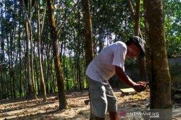 Indonesia buka peluang kerja sama industri ban dengan China