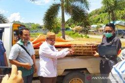 Bupati Gorut : Keamanan pangan jadi prioritas pemda