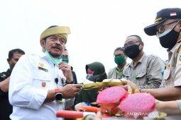 Mentan sasar peluang pengembangan ekspor hortikultura di Kepri