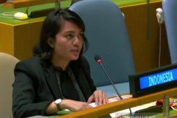 RI tegaskan Vanuatu bukan wakil dari warga Papua